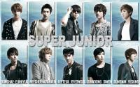 Super Junior 'Bijin' (Bonamana Jap.Ver)