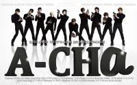 Super Junior 5th Album [Mr.Simple] Repackage : 'A-CHa'