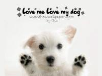 loveMeLoveMyDog