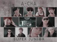 Super Junior A-Cha [Mr.Simple]