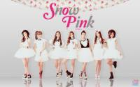 A-PINK {2nd mini album 'SNOW PINK' WD}