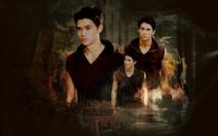 Seth Clearwater : The twilight saga breaking dawn part. 1