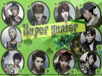 ::super_junior::
