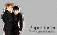 Shindong and sungmin1
