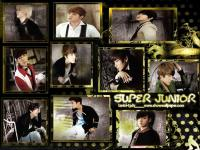 super junior_golden