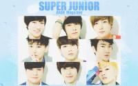 Super Junior :: ANAN Magazine