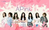 APink - UNE ANNEE