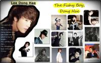 The Fishy Boy: Dong Hae
