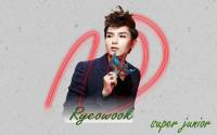 super junior opera Ryeowook