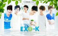 EXO K - the face shop [fresh]