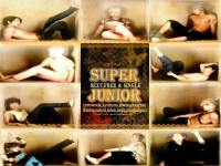 suju_sexy,free&single part 2