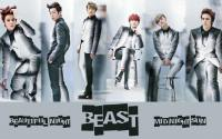 Beast - Beautiful night - grey