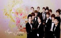 SUPER JUNIOR Vintage