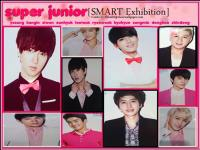 super_junior[SMART_Exhibition]