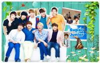 super_junior_Natural_#8
