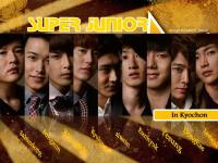 _super_junior_kyochon#1_