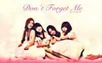 Girl's Day : Don't Forget Me