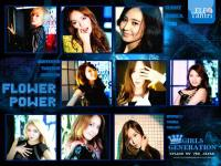 GG_SPLASH_Flower_Power_Ver_Japan