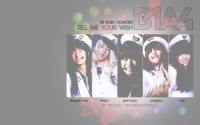 B1A4 - Tell me your wish