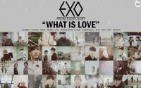 EXO :: What Is Love ♥