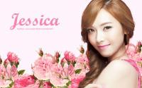Jung Sica Banila Co.