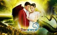 ปักษา นาคราช-Photoshop Wedding Dress Filled With Love 2013