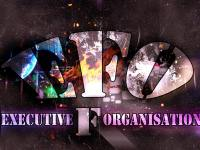 Executive F Organisation