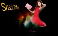 Snsd Tiffany Imagination Netbook