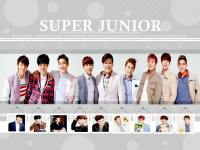 Super Junior::LOTTE DUTY Rev 2::UPDATE 2013