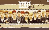 EXO[WOLF] :: Kiss the radio