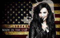 DEMI LOVATO [made in the usa]