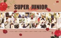 SUPER JUNIOR :: HERO