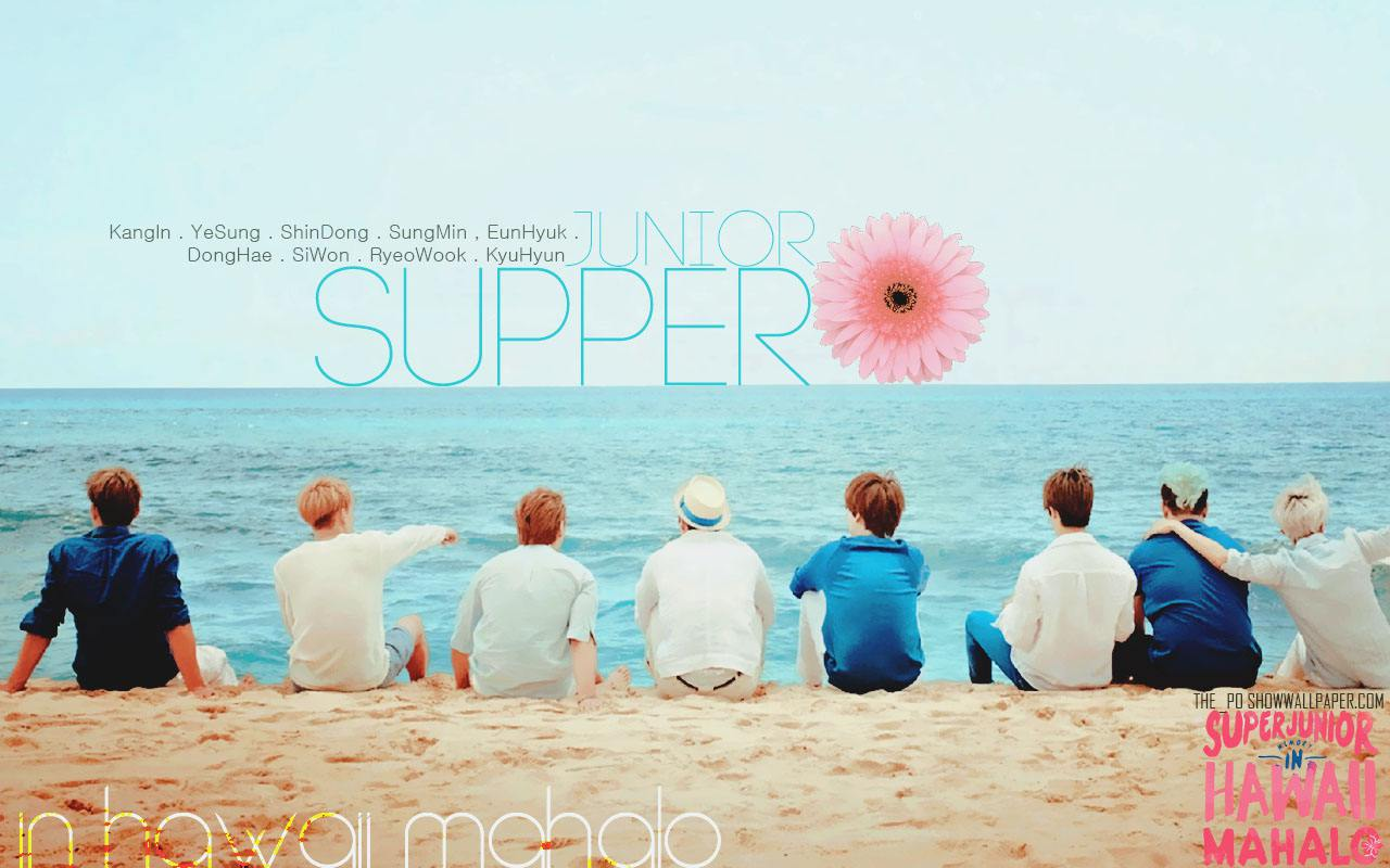 Google themes super junior - My Own Super Junior Theme For Google Chrome It S Really Happy To Discover This