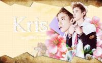 Kris Happy Birthday
