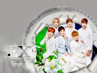 EXO M : Nature Republic 2013
