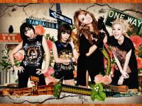 2NE1 Beautiful Girl's