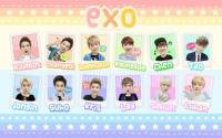 Colorful EXO