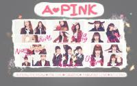 A-PINK : PINK BLOSSOM