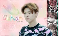 EXO:Happy Luhan Day 25th
