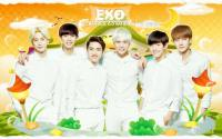 EXO [K] - Nature Republic - july 2014