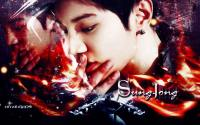 SungJong Wallpaper
