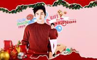 GIFT FOR CHRISTMAS :: HOYA!