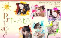 T-ARA:Private Book