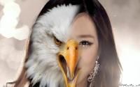 SNSD Animal Spirit : Tiffany The Eagle