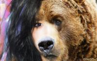 SNSD Animal Spirit : Yuri The Bear
