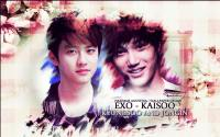 Happy KaiSoo Day