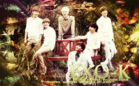 "EXO-K ""Nature Republic"""