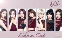 AOA - Like a Cat (Japan Version)