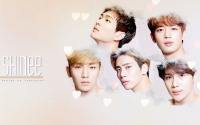 SHINee :: the SAEM