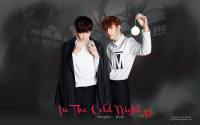 VIXX :: IN THE COLD NIGHT